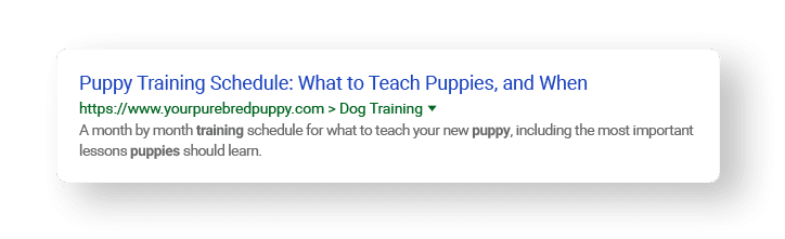 meta description examples for puppy training schedule search