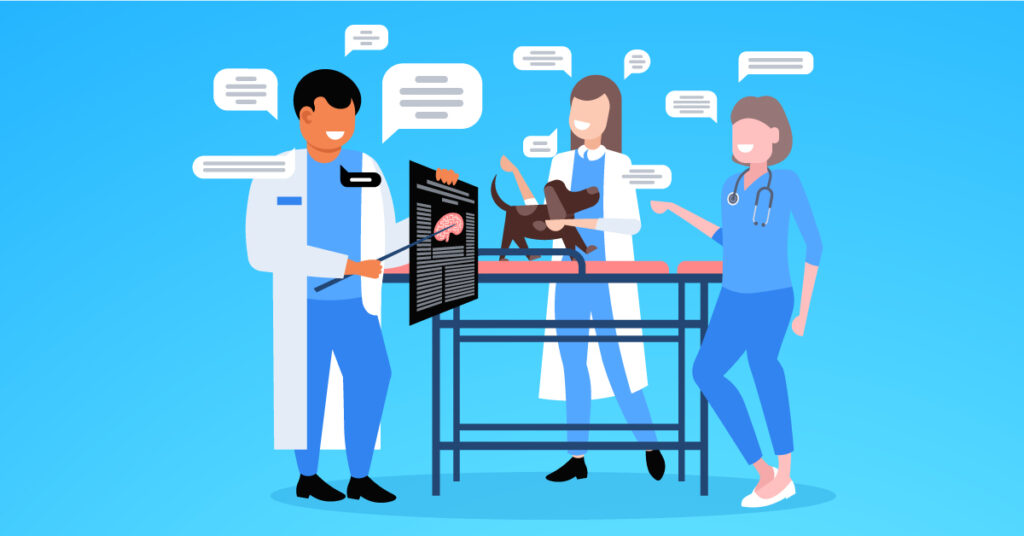 communicating with the team veterinary practice