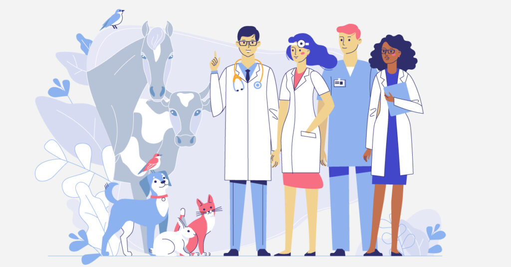 team building veterinary practice