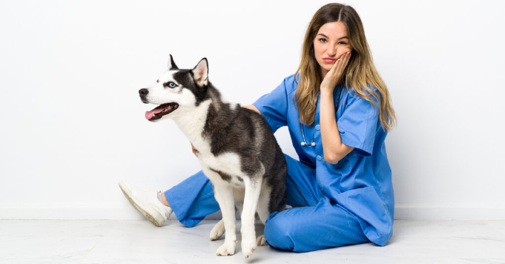 A stressed vet sitting with a dog patient.