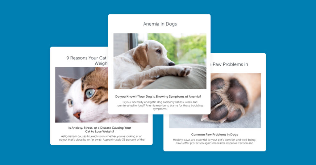 veterinary educational content